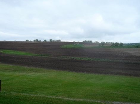 Rural,Farm - Verona, WI (photo 5)