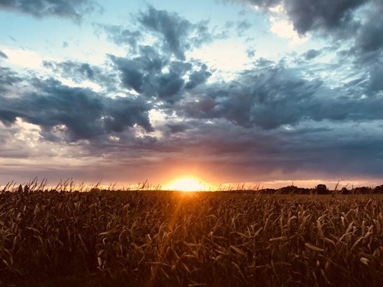 1 story, Ranch,Raised Ranch - Edgerton, WI (photo 2)