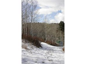 2555 S. Forest Meadow Road, Coalville, UT - USA (photo 5)