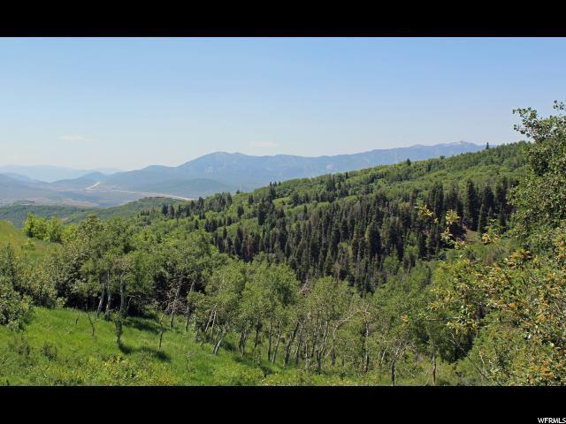 2555 S Forest Meadow Rd E, Coalville, UT - USA (photo 3)