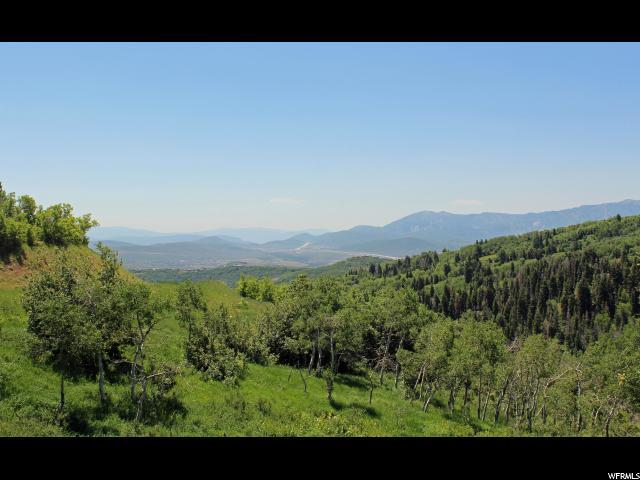 2555 S Forest Meadow Rd E, Coalville, UT - USA (photo 4)