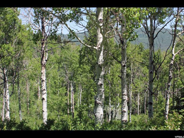 2555 S Forest Meadow Rd E, Coalville, UT - USA (photo 5)