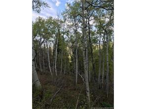 121 W Elk Ridge Rd Echo 84024, Echo, UT - USA (photo 2)