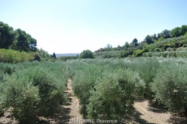 Salon De Provence - FRA (photo 1)