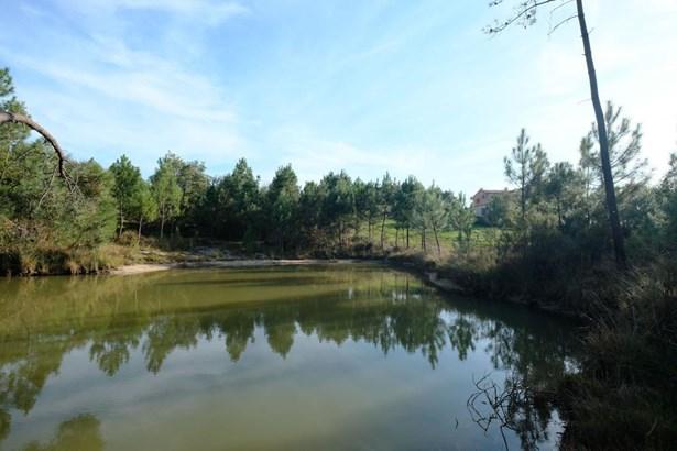 Montguyon - FRA (photo 4)