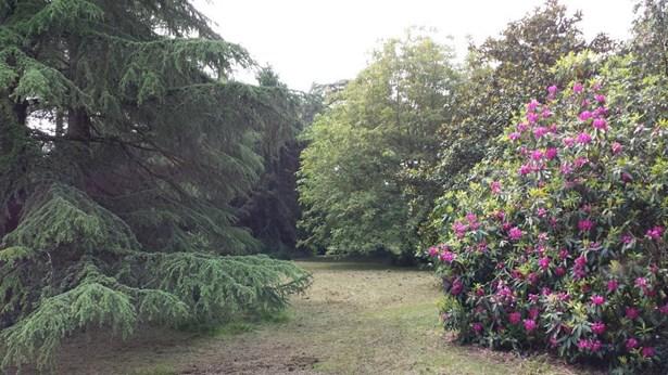 Sainte Hermine - FRA (photo 3)