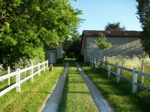 Niort - FRA (photo 5)