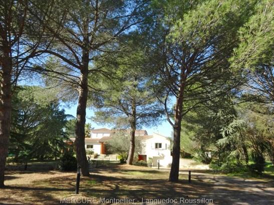 Montpellier - FRA (photo 2)