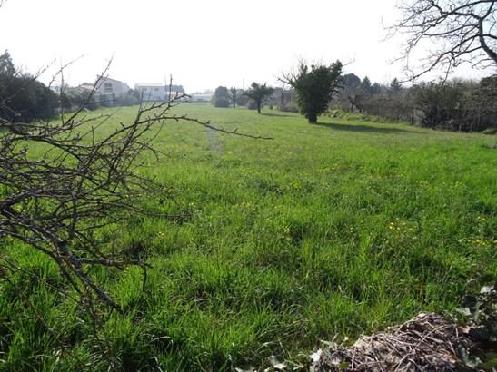 Niort - FRA (photo 4)