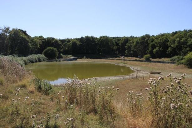 Chatellerault - FRA (photo 4)