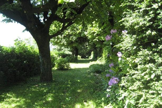 Montsauche - FRA (photo 4)