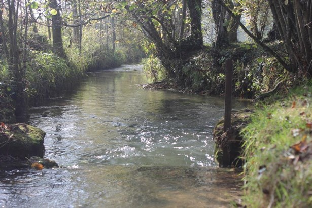 Le Chesne - FRA (photo 3)