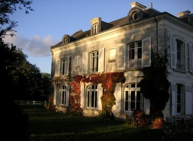 Chatillon Sur Indre - FRA (photo 1)