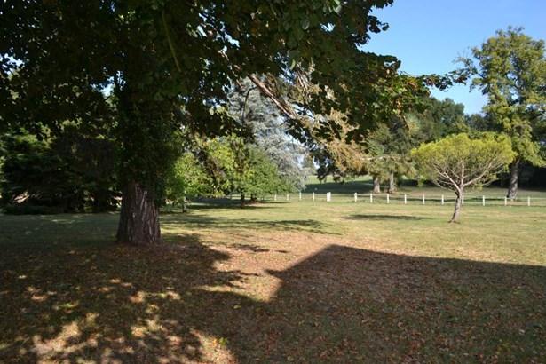 Chatillon Sur Indre - FRA (photo 4)