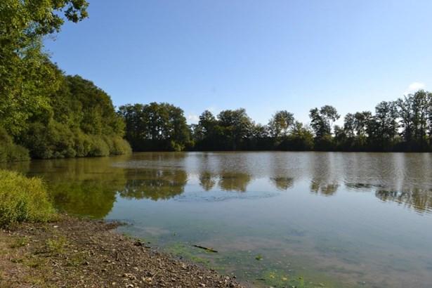 Chatillon Sur Indre - FRA (photo 5)