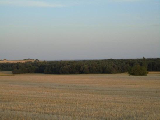 Chinon - FRA (photo 5)