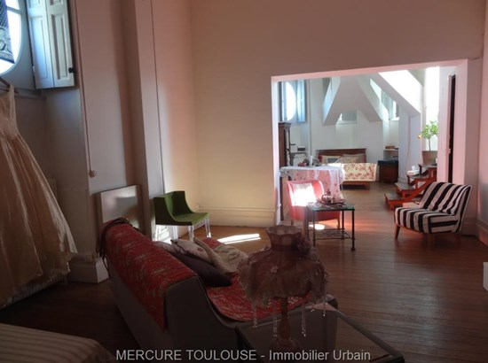 Toulouse - FRA (photo 2)