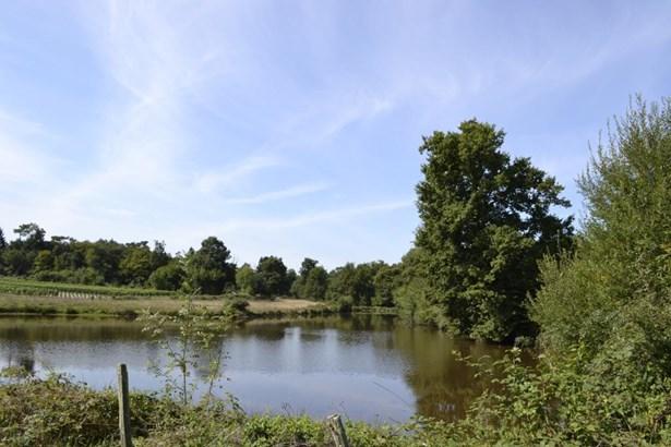Mirambeau - FRA (photo 1)