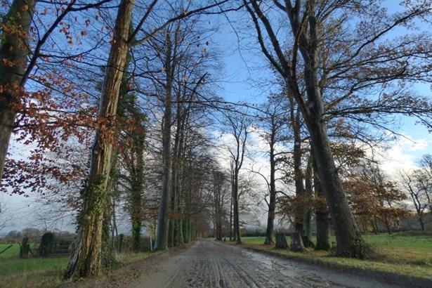 Oise - FRA (photo 5)