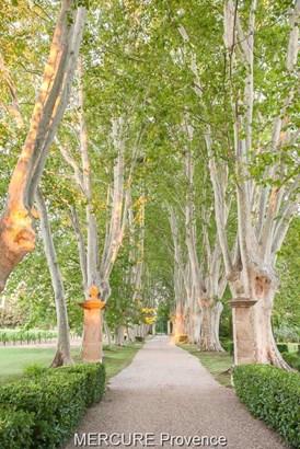 Avignon - FRA (photo 5)