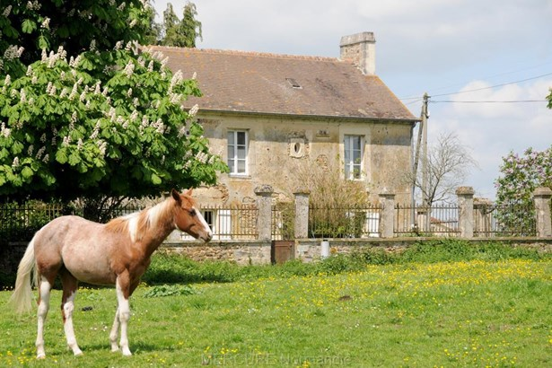 Falaise - FRA (photo 4)