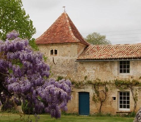 Saint Maxire - FRA (photo 4)