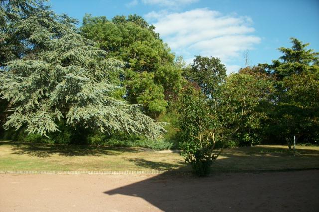 Bressuire - FRA (photo 5)