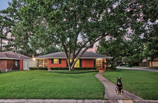 Picturesque Oak Forest residence nestled on a corner lot beneath the canopy of mature pecan trees. This meticulously maintained front yard is kept low maintenance with evergreen shrubs and full sprinkler system. (photo 1)