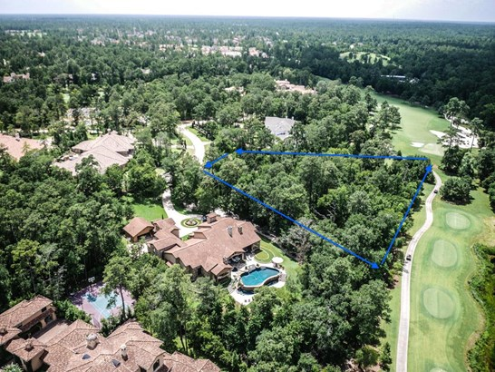 2 Fleury Way, The Woodlands, TX - USA (photo 5)