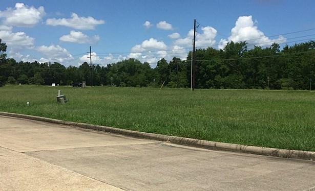 7725 Quail Court, Beaumont, TX - USA (photo 3)