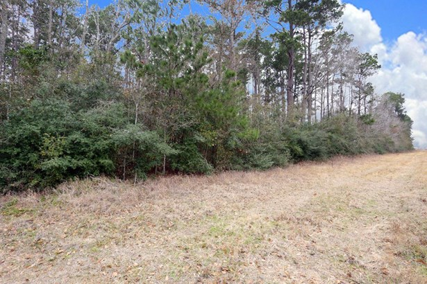 A0467 Reynolds George Tract 2, Magnolia, TX - USA (photo 1)