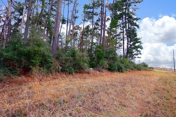 A0467 Reynolds George Tract 2, Magnolia, TX - USA (photo 5)