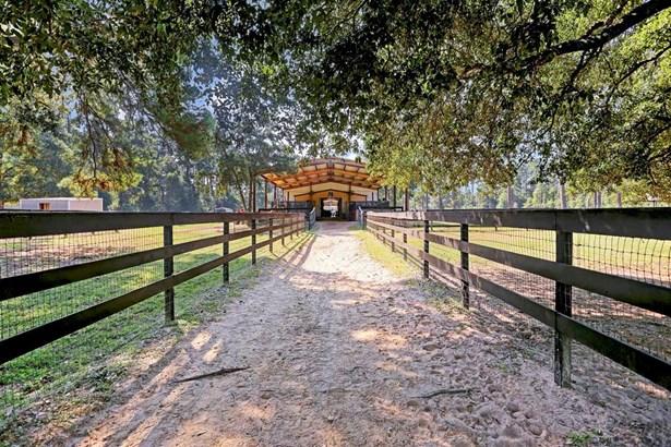 13120 Noack Road, Magnolia, TX - USA (photo 5)