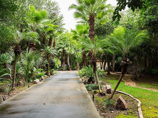 Count the palms. Lushly landscaped lot with private gate. (photo 4)