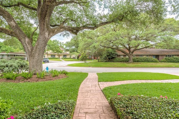 Looking from the front door toward the street -- beautiful large oak tree with fresh plantings and great neighborhood views! (photo 2)