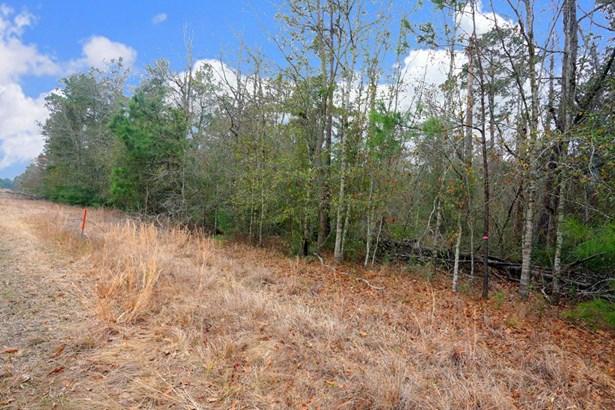 A0467 Reynolds George Tract 2 A, Magnolia, TX - USA (photo 2)