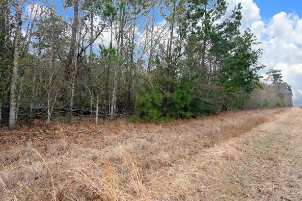 A0467 Reynolds George Tract 2 A, Magnolia, TX - USA (photo 3)