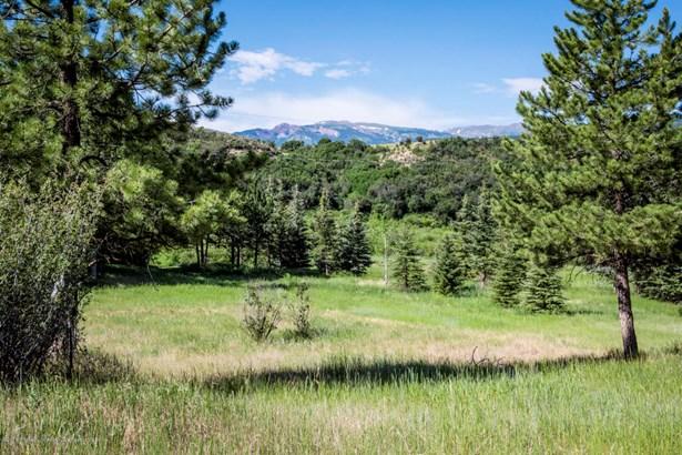 Single Family Lot - Woody Creek, CO (photo 2)