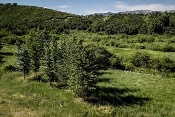 Single Family Lot - Woody Creek, CO (photo 5)