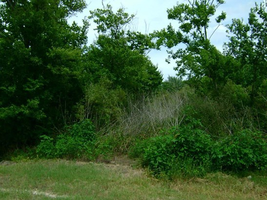 Cross Property - San Leon, TX (photo 3)