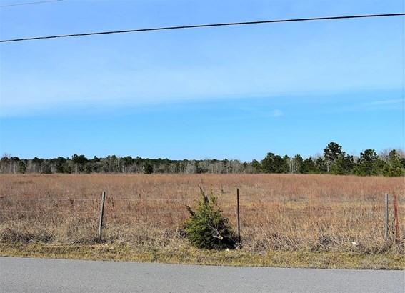 Cross Property - Dickinson, TX (photo 3)