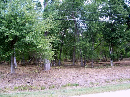 Cross Property - Dickinson, TX (photo 2)