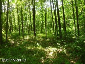 woodworth woods (photo 4)