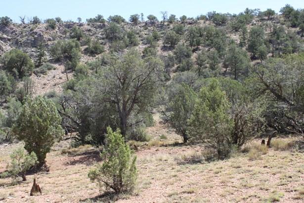Residential - Ash Fork, AZ (photo 3)