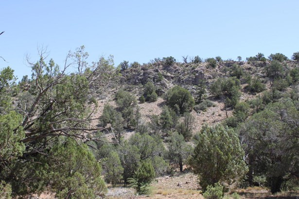 Residential - Ash Fork, AZ (photo 4)