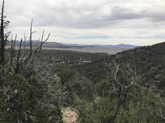 Ranch/Agricultural - Seligman, AZ (photo 1)