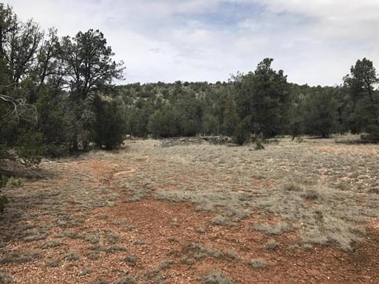 Ranch/Agricultural - Seligman, AZ (photo 5)