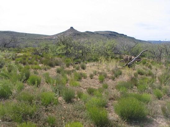Ranch/Agricultural - Kirkland, AZ (photo 2)