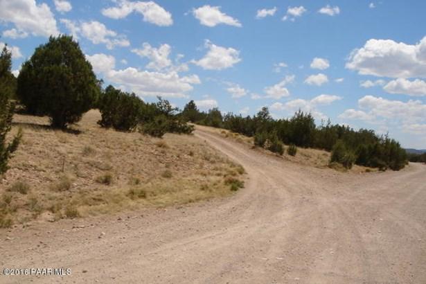 Ranch/Agricultural - Seligman, AZ (photo 3)