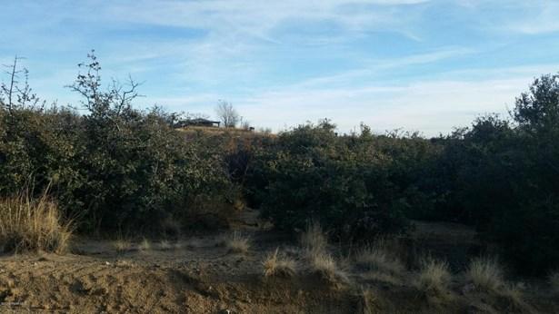 Residential - Wilhoit, AZ (photo 4)